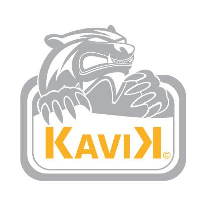 Kavik